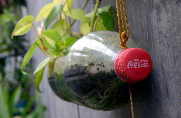 An empty Coca-Cola plastic bottle is converted into a plant pot in Manila, Philippines, on December 14, 2012. (AFP / Jay Directo)