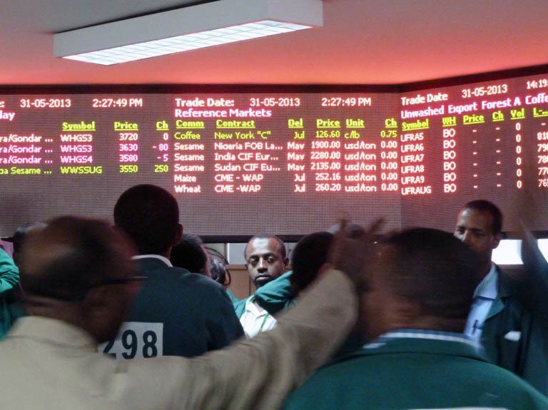 Coffee traders shop for deals on the floor of the Ethiopian Commodities Exchange (ECX) in Addis Ababa. (Pic: AFP)
