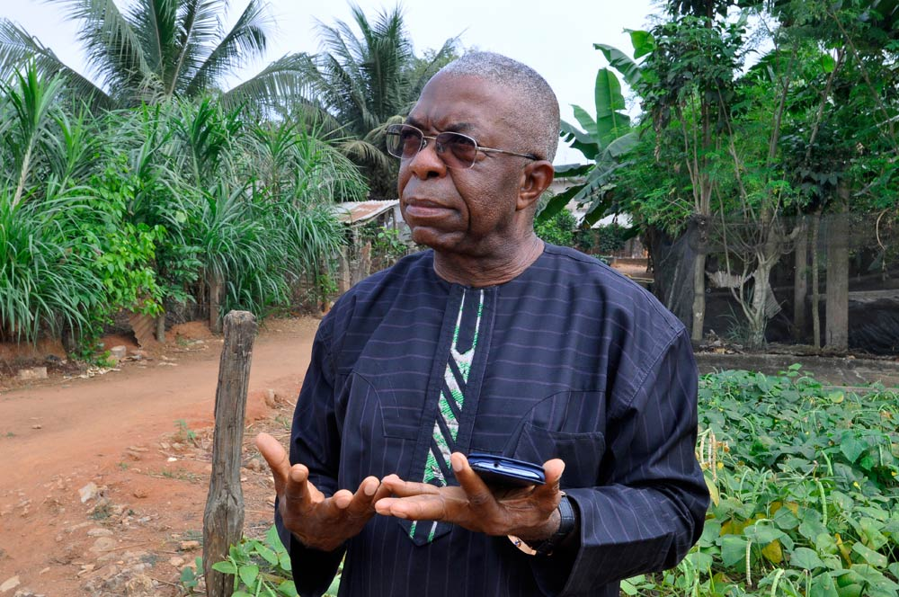 Father Godfrey Nzamujo, director of the organic farm  Centre Songhai. (Pic: AFP)